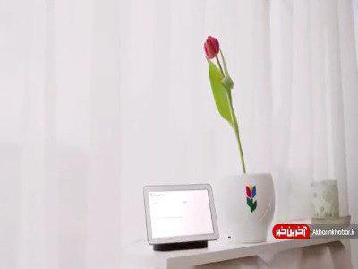 آیا گلها صحبت میکنند؟